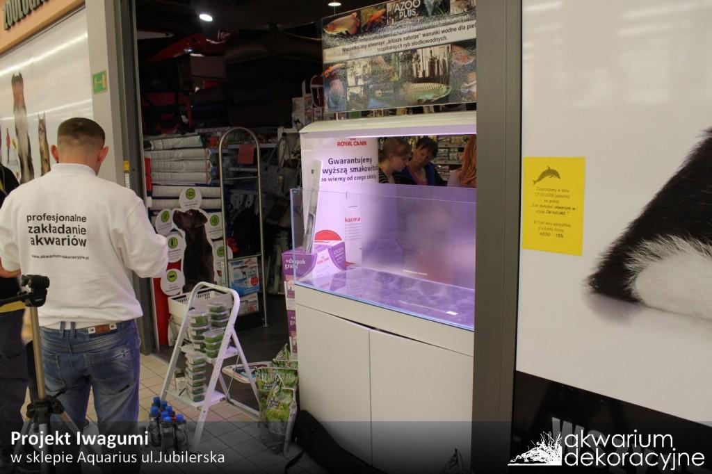 zakładanie akwarium dekoracyjne warszawa aquarius jubilerska 1