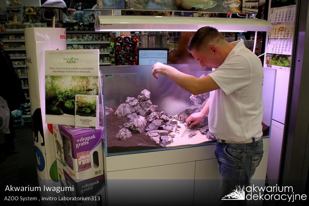 zakładanie akwarium dekoracyjne warszawa aquarius jubilerska 14