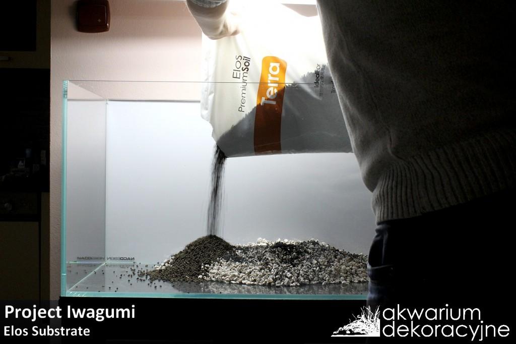 zakładanie akwarium naturalne iwagumi optiwhite elos 1