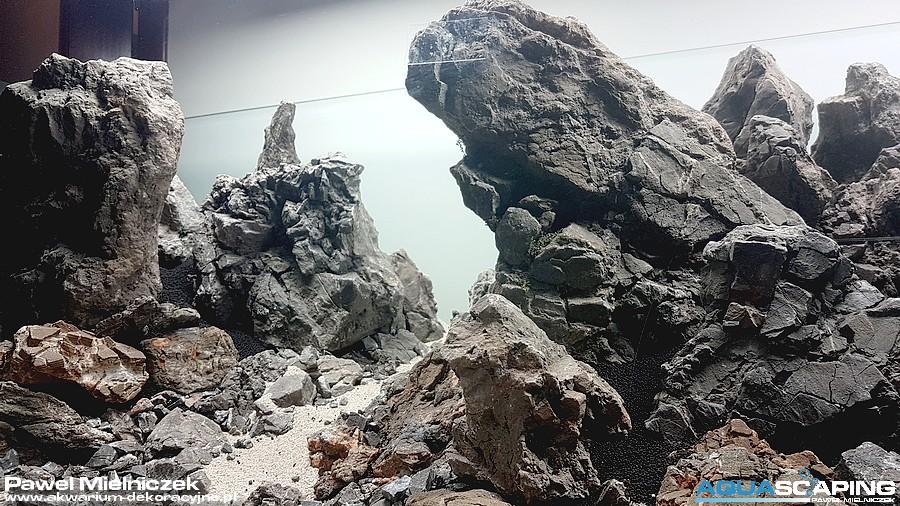 ada frodo stone